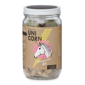 unicorn gifts - DIY Unicorn Terrarium Kit