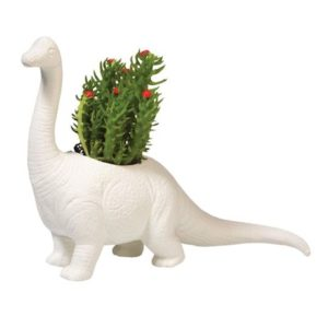 Dinosaur Gifts for Adults - Plantosaurus