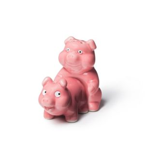 Funny Gag Gifts - Naughty Pigs Salt and Pepper Shaker Set