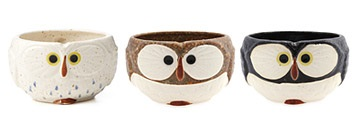 Gifts for Animal Lovers - Owl Gifts