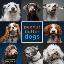 Gifts for Dog Lovers - Peanut Butter Dogs book