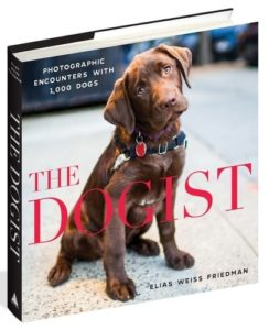 Gifts for Dog Lovers - The Dogist Photographic Encounters with 1,000 Dogs
