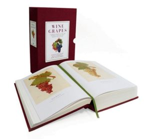 Gifts for Wine Enthusiasts - Wine Grapes book
