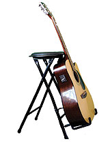 Guitar Gifts - StagePlayer Guitar Stand and Stool