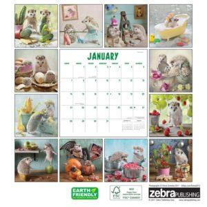 Hedgehog Gifts - Hedgehogs Calendar