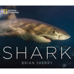 Shark Gifts - Shark